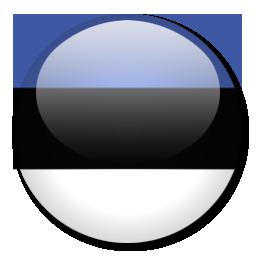 Image result for EE flag